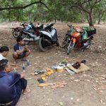 <span>Sòng bạc tổ chức trong vườn điều tại Bình Phước bị bắt quả tang</span>