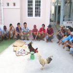 Bắt quả tang 21 đối tượng đá gà ăn tiền tại An Giang