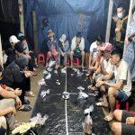 Xóa 2 tụ điểm đánh bạc tại Quang Nam có chim lợn cảnh giới