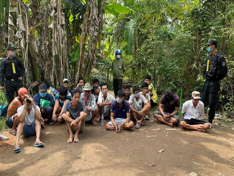 Bắt 25 đối tượng tổ chức đá gà ăn tiền tại An Giang