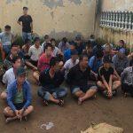 Bắt quả tang hàng chục người tham gia đá gà tại Q.Bình Tân