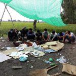 Cảnh sát tỉnh Đồng Tháp triệt phá sới bạc trên cánh đồng